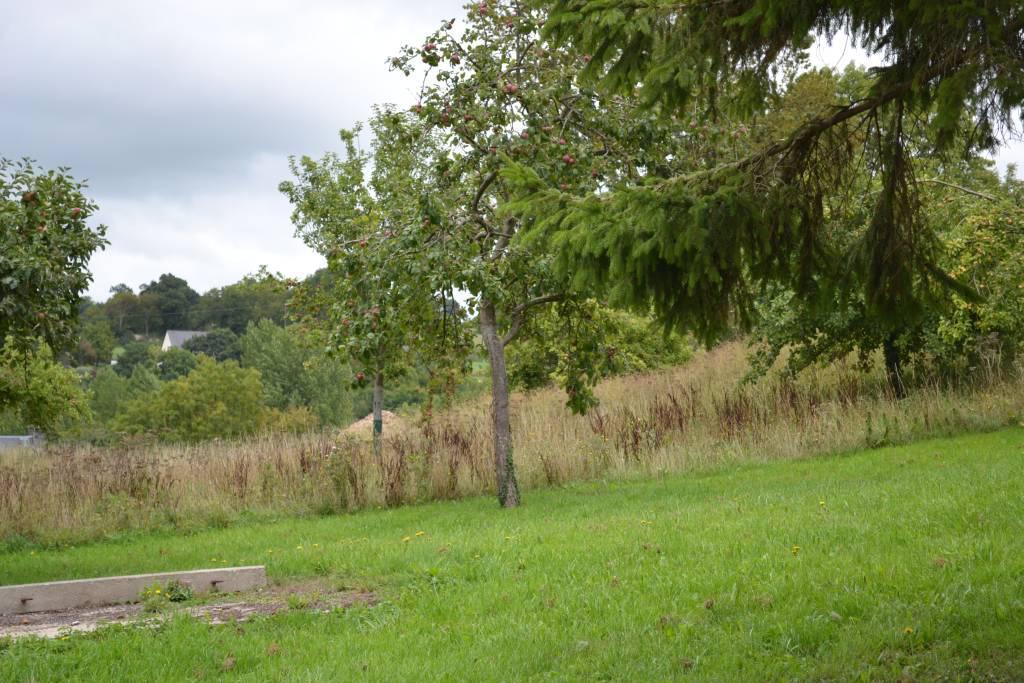 terrain en vente Quettreville-sur-Sienne