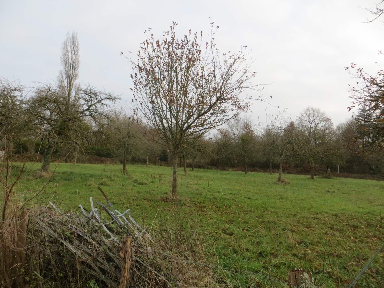 terrain en vente Bellou-en-Houlme