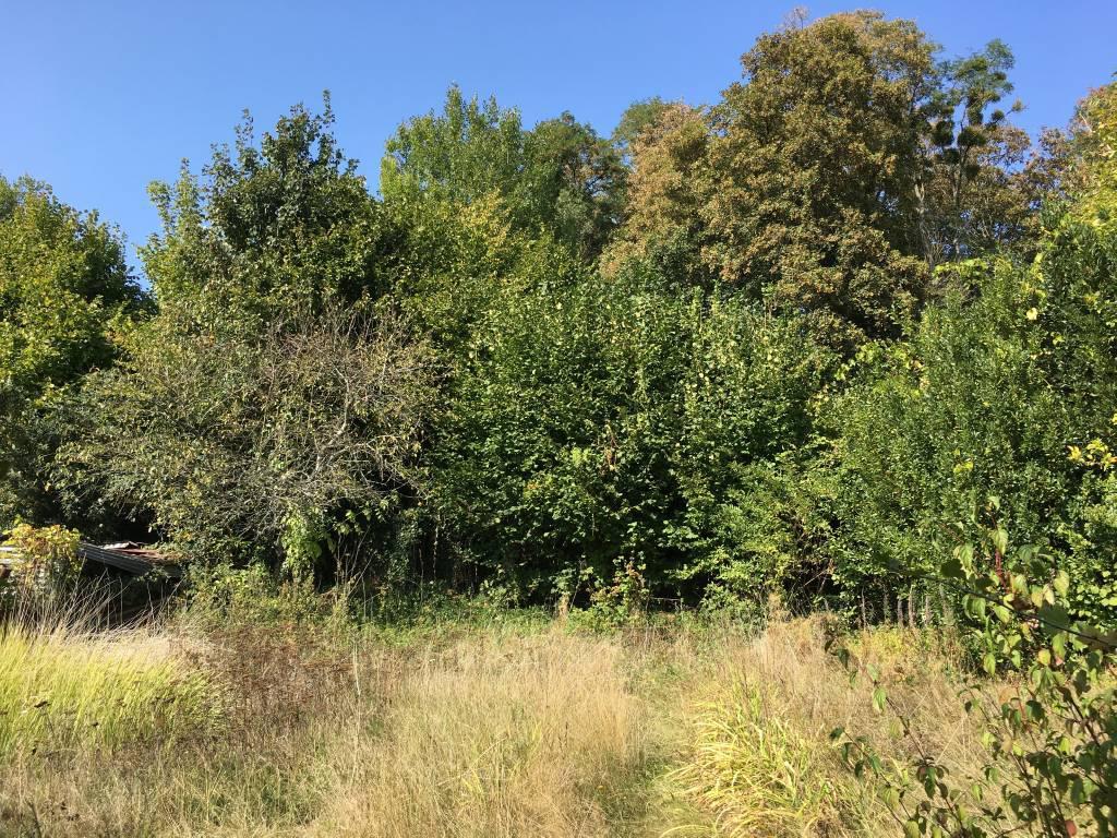 Terrain agricole en vente Moulins-la-Marche