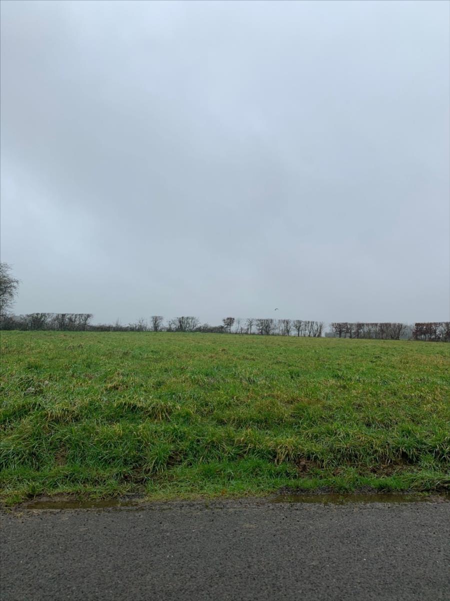 terrain en vente Capelle-les-Grands