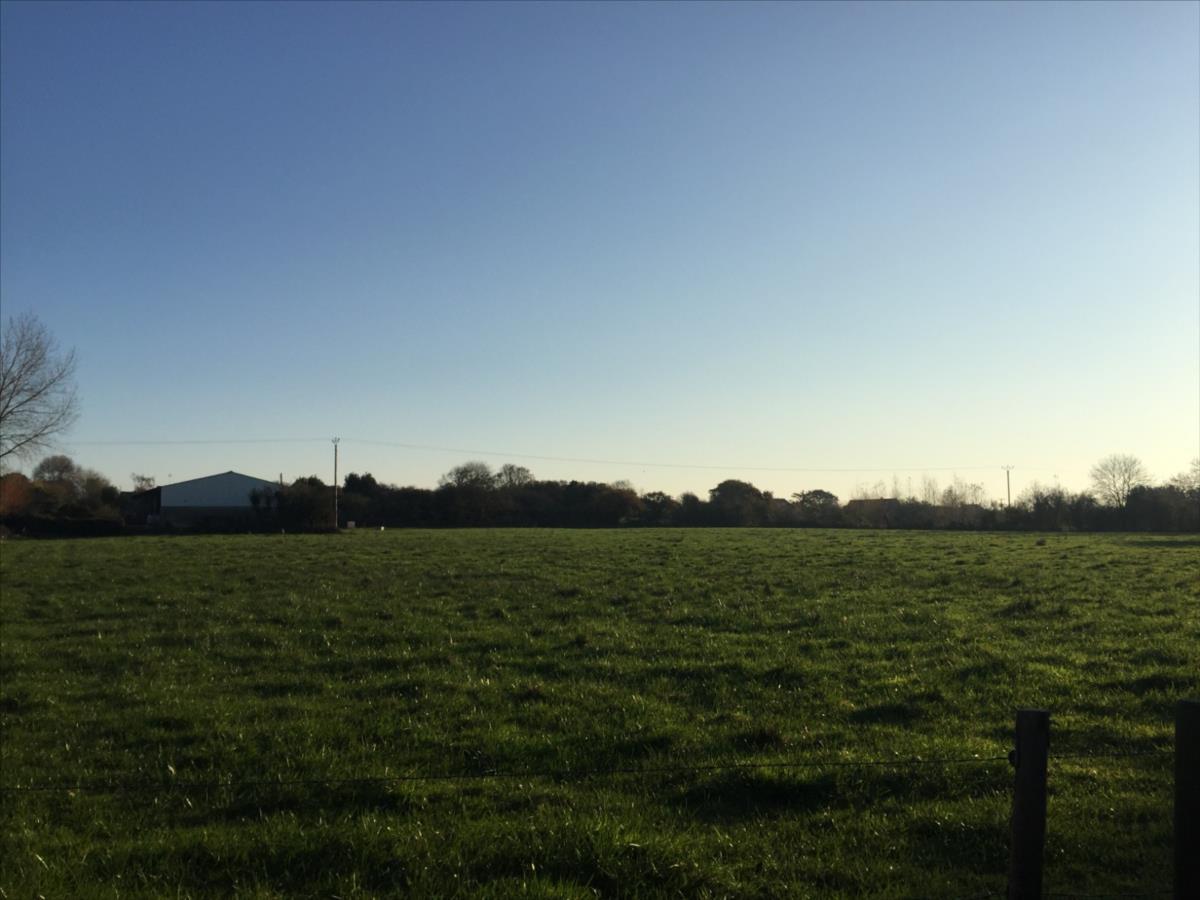 Terrain agricole en vente La Haye
