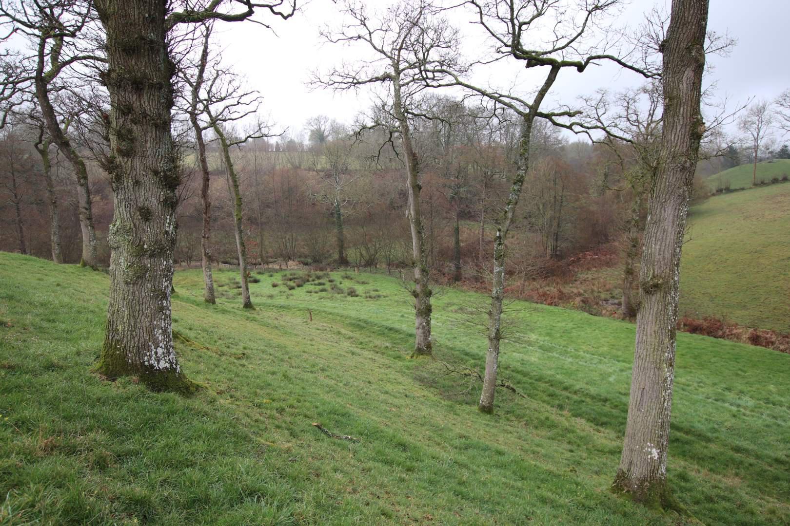 Terrain agricole en vente Saint-Amand-Villages
