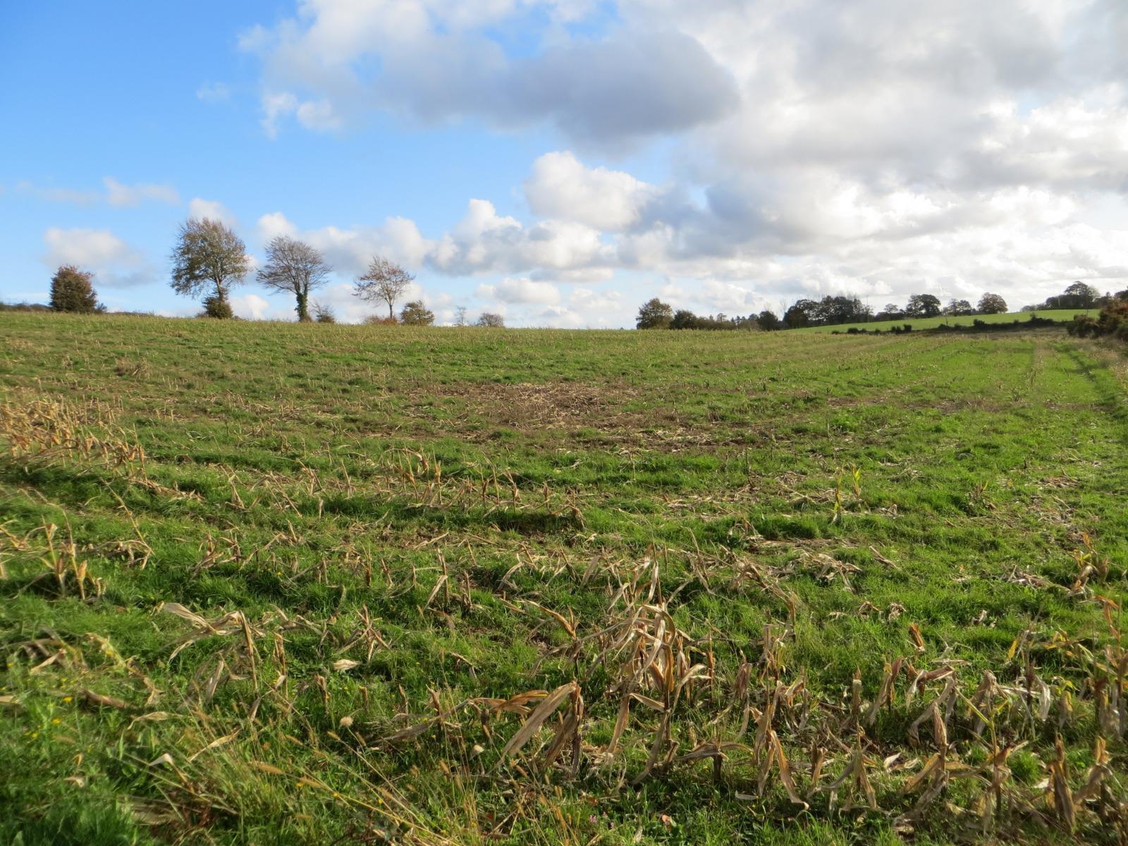 Propriété agricole en vente Vire Normandie